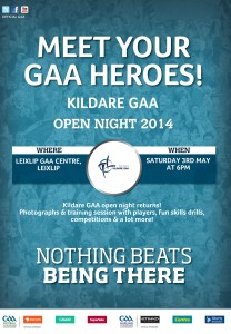 Kildare-GAA-Poster-2014
